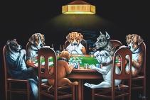 velvet dogs 4