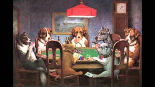velvet dogs