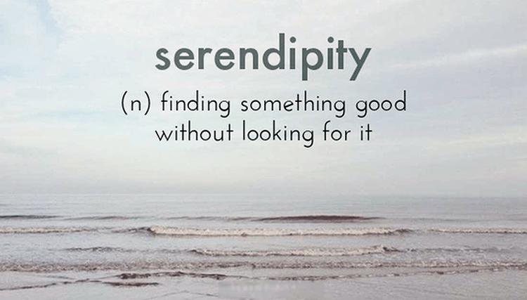 The Serendipity of It All